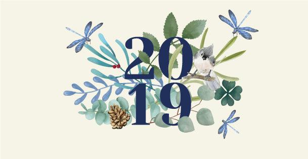 Carte de vœux 2019